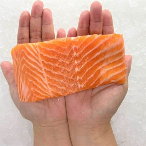 Air Flown Norway Fresh Trout Fillet Portioned Boneless Skin On 200g Hand