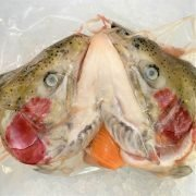 Frozen Norway Salmon Trout Head And Bones Skin