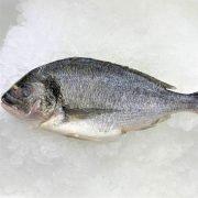 Frozen Sea Bream Mediterranean Whole Fish Gutted 400g Unpack