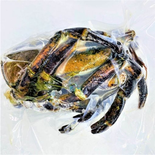 Frozen Usa Canada Lobster Shells 1kg Pack Behind