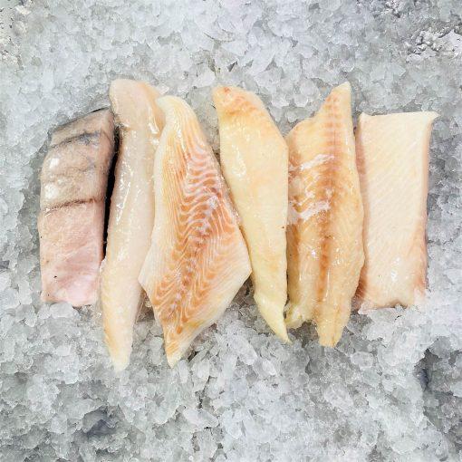 Frozen Fillet Portioned Burranmundi Haddock Gindara Halibut Bundle Sep Unpacked