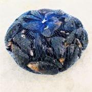 Air Flown Scotland Fresh Blue Mussels 1kg Back