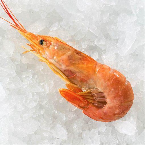 Frozen Argentina Red Shrimps Whole Head On Raw Large 2kg Unpack 1pc