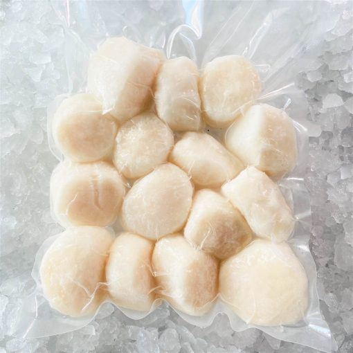 Frozen Canada Msc Scallop Meat Large 500g Pack