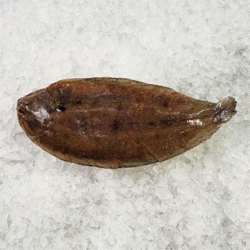 Frozen Denmark Dover Sole Whole Fish Gutted 350g Unpack Skin
