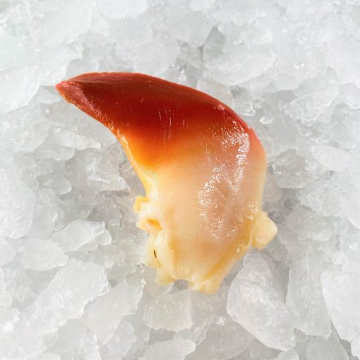 Frozen Japan Canada Arctic Surf Clams Hokkigai Meat 200g Inside Defrost 1pc