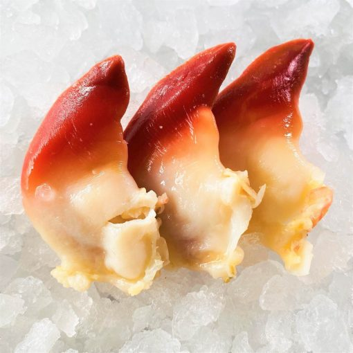 Frozen Japan Canada Arctic Surf Clams Hokkigai Meat 200g Inside Defrost 3pcs