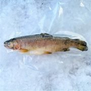 Frozen Turkey Rainbow Trout Whole Fish Gutted 250g Pack
