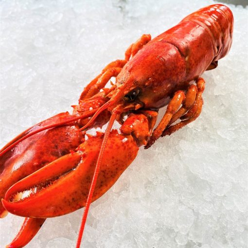 Frozen Usa Canada Lobster Head On Cooked 350g Unpack Zoom