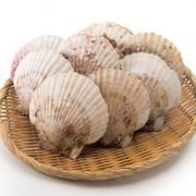 Frozen Japan Scallop Meat Lsize Sashimi Grade 500g Shell