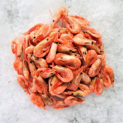 Frozen Norway Cold Water Shrimps Cooked Head And Shell On 1kg Unpacked Defrost
