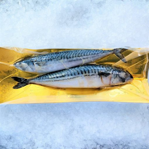 Frozen Norway Saba Mackerel Whole Fish 2 Pieces 900g Pack