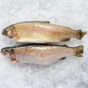 Frozen Turkey Rainbow Trout Whole Fish Gutted 250g X2 Unpacked