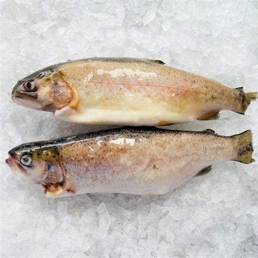 Frozen Turkey Rainbow Trout Whole Fish Gutted 250g X2 Unpacked Diagonally