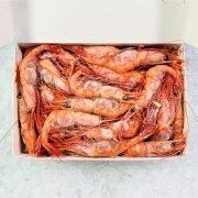 Frozen Shellfish Japan Amaebi Cold Water Shrimps Raw Whole Shell On 3l Inside