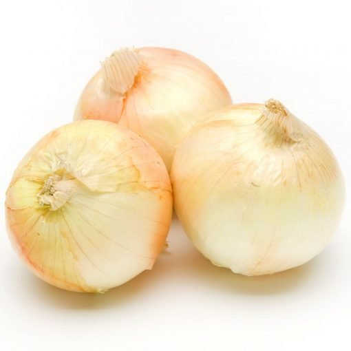 Air Flown Fresh New Onion Shin Tamanegi 新玉ねぎ