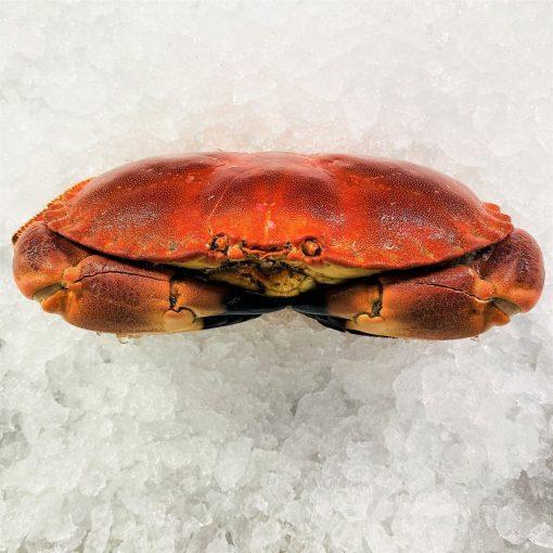 Frozen Ireland Brown Crab Whole Cooked 800 1000g Unpack Frozen Side